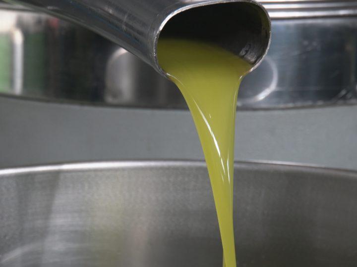 """""""Un extra per la ricerca"""", gli olivicoltori italiani al fianco di Fondazione Airc"""
