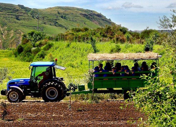 Gal Etna Sud, aiuti a forfait per start-up extra-agricole di giovani e donne