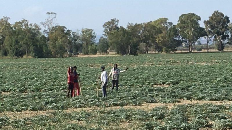 Onu, tappa anche in Sicilia: migranti e piccoli agricoltori vittime del sistema