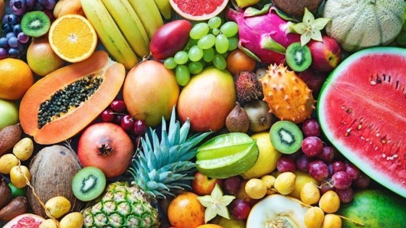 Frutti tropicali in Sicilia. Giornata di studio a Rocca di Caprileone (Me)