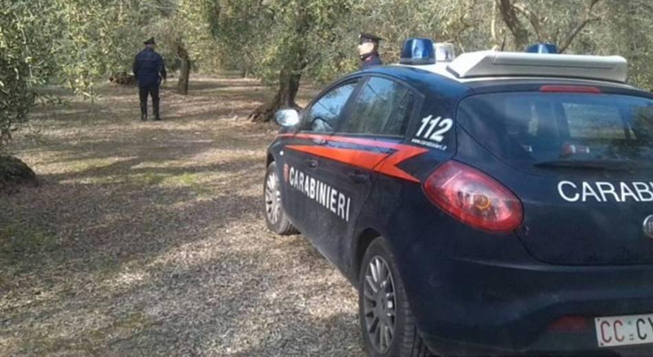 Dopo i morti nel Catanese, Sos di Coldiretti: ogni anno furti per 300 milioni