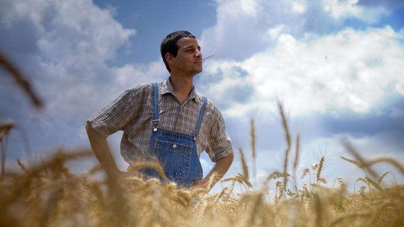 Giovani agricoltori, ai dubbi del M5S Bandiera risponde: pronti altri 700 decreti