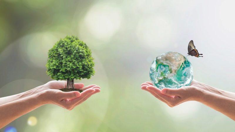 Nei prossimi anni un posto di lavoro su 5 sarà creato dal New Green Deal