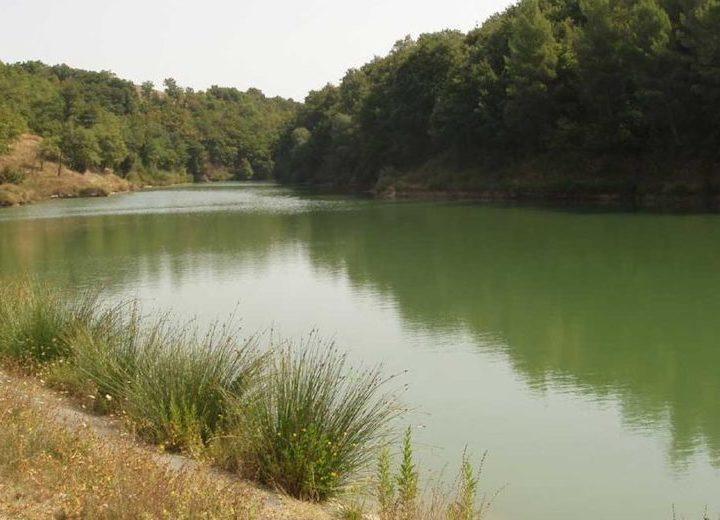 Agricoltura e zootecnia a rischio siccità? Musumeci rispolvera i laghetti collinari