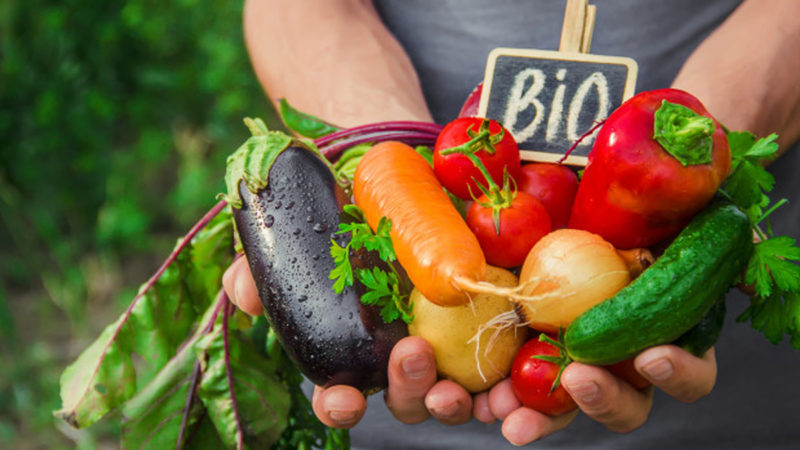 Biologico, in arrivo i premi per il mantenimento previsti dal bando 2019 Psr Sicilia