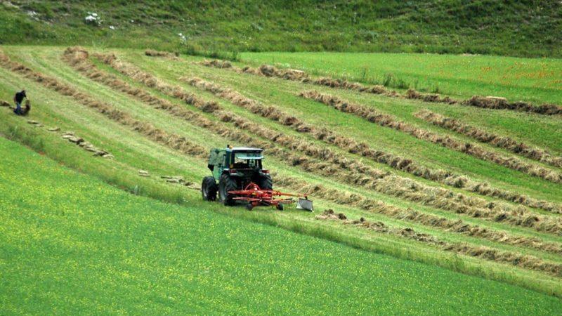 Agricoltura, fino al 6° grado di parentela la prestazione può essere gratuita