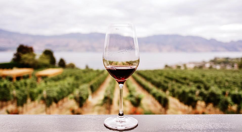 L'Irvo torna a certificare vini e olii. Revocata la sospensione del ministero