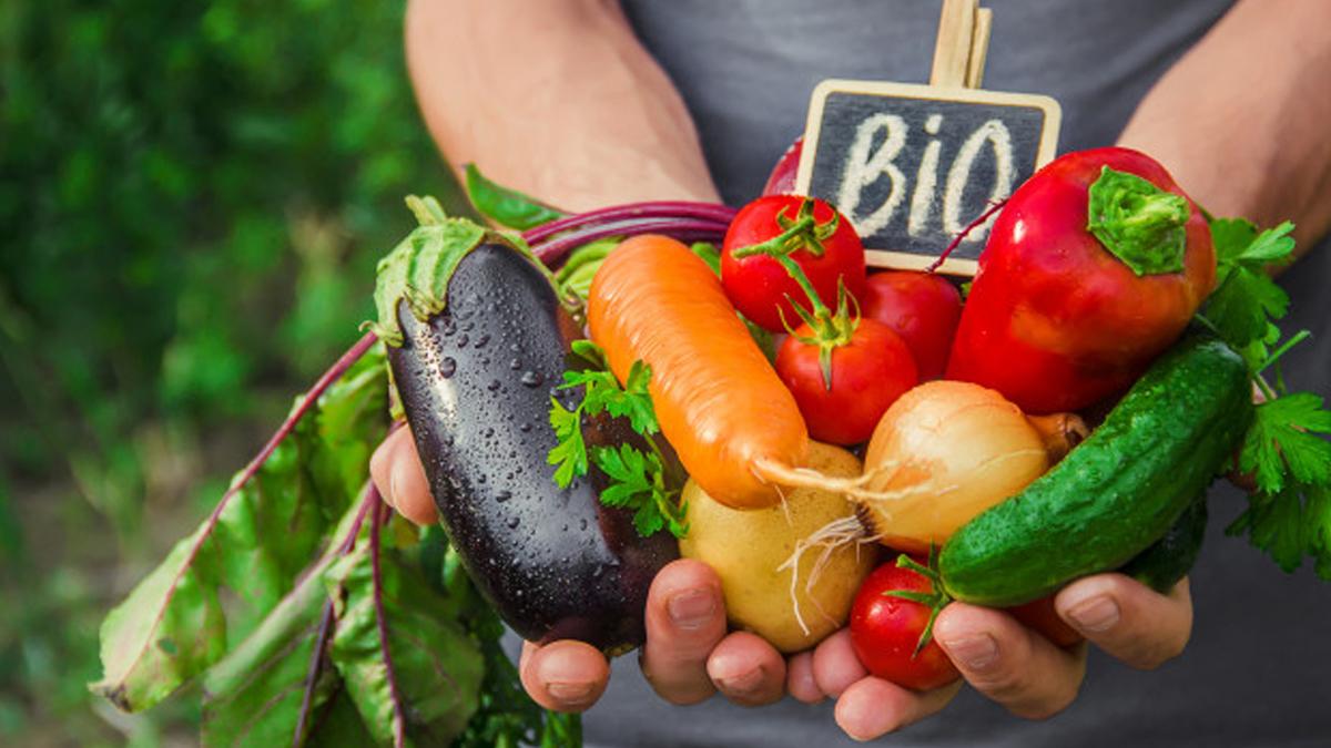 Bio in Sicily 2021, tre giorni su sostenibilità in agricoltura, pesca e turismo