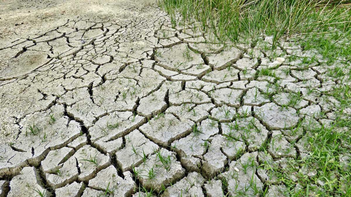 I meteorologi: sarà un'estate caldissima, rischio siccità sempre più vicino
