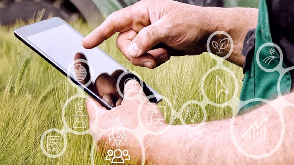 Agricoltura 4.0, a Comiso un progetto per gestire da remoto colture e serre