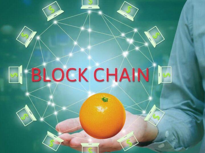 blockchain agrumi