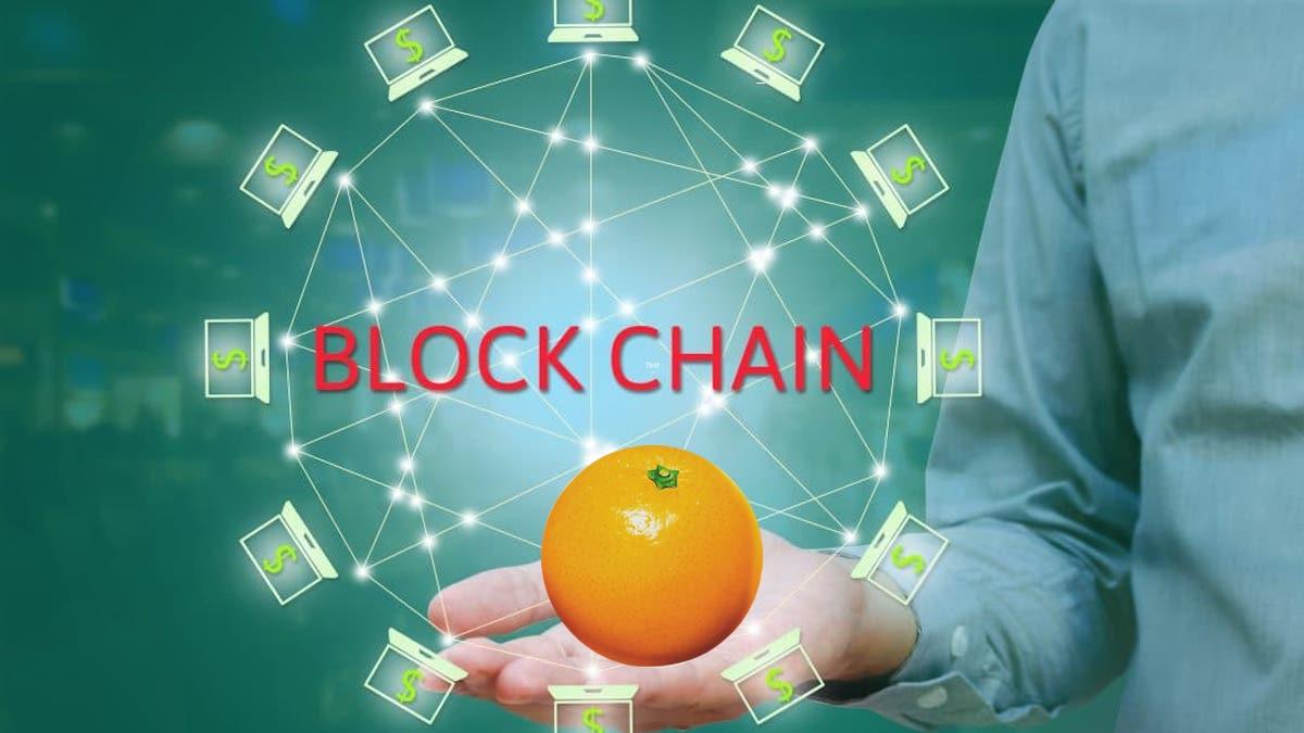 Blockchain e filiera agrumicola, dal Distretto Agrumi un webinar gratuito