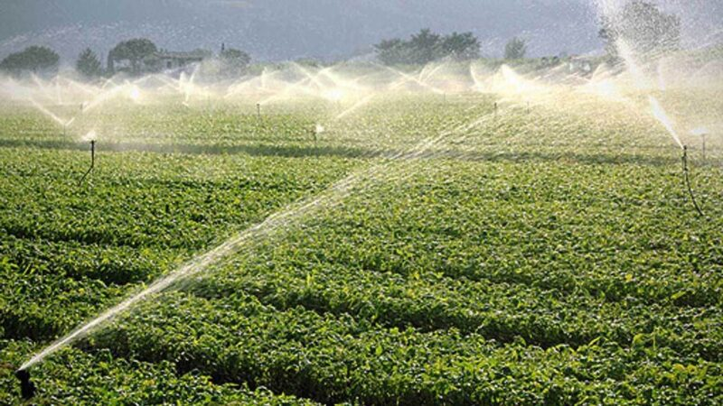 Water4AgriFood
