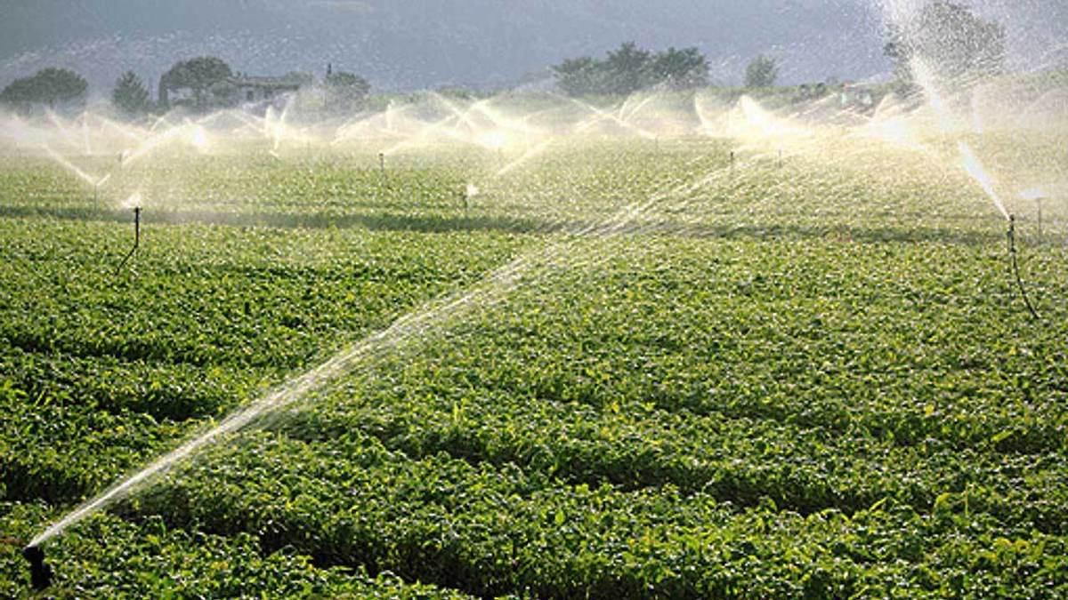 """""""Water4AgriFood"""", studio di Unict sull'uso sostenibile delle risorse idriche"""
