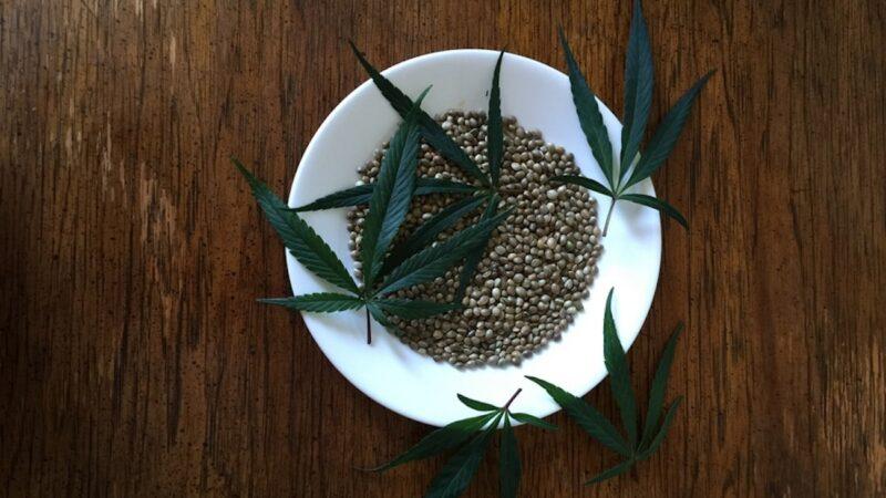 canapa semi e foglie