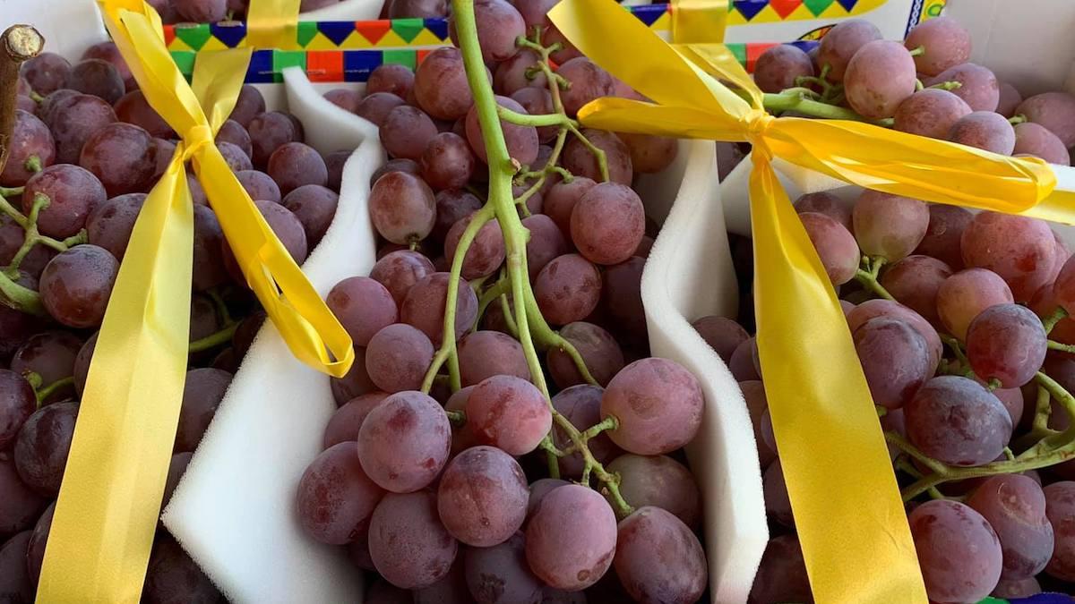 Strategia in tre punti per il rilancio dell'uva da tavola Made in Italy
