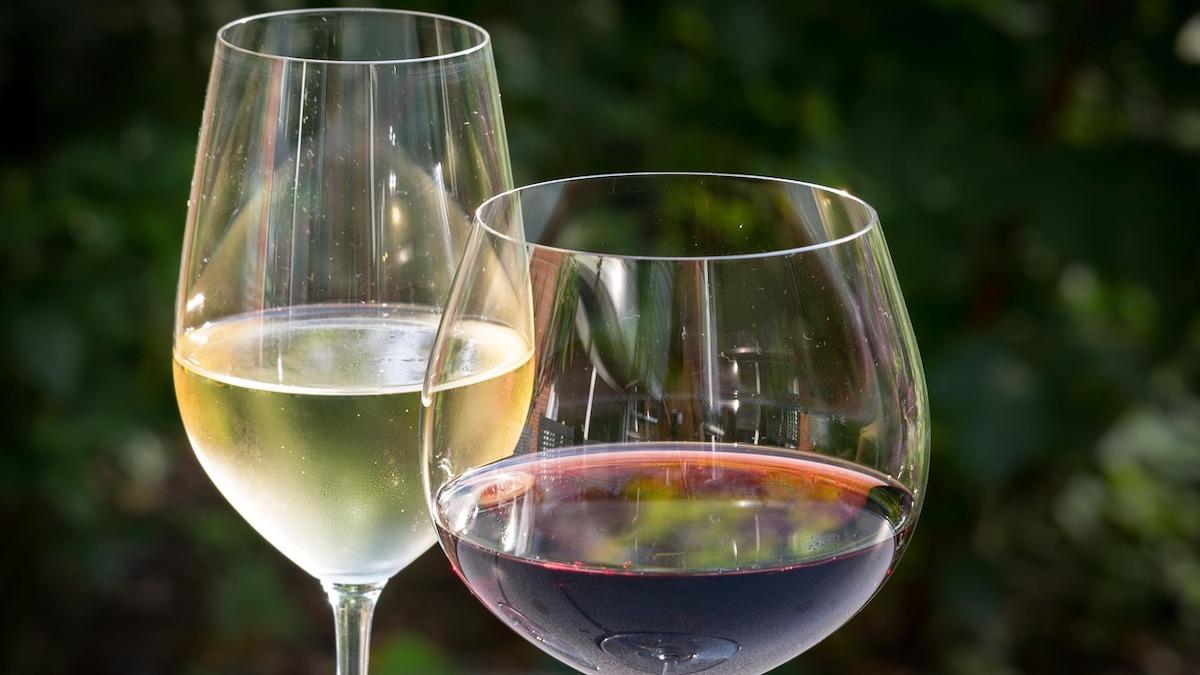 All'Irvo la certificazione dei vini a Doc e Igp prodotti a Malta