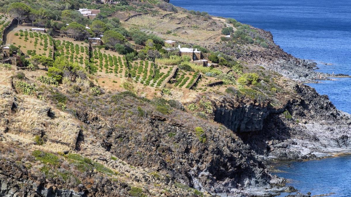 Pantelleria Youth Forum, il futuro sostenibile pensato con i giovani