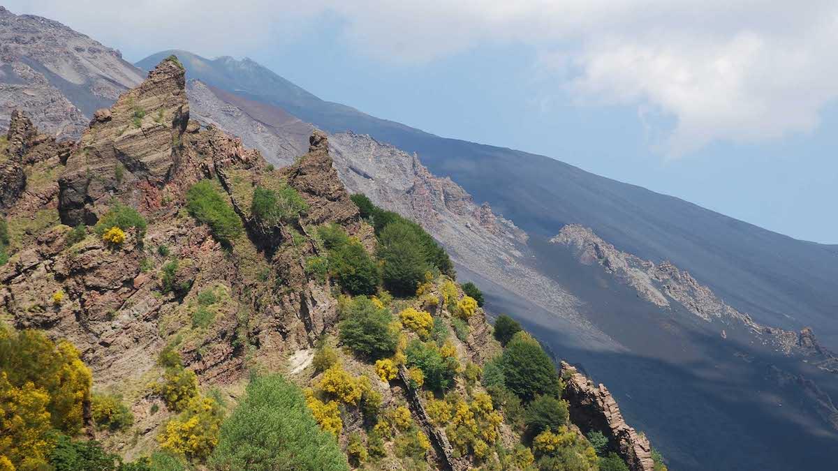 Rimappata la flora dell'Etna: 29 endemismi stretti e oltre mille specie