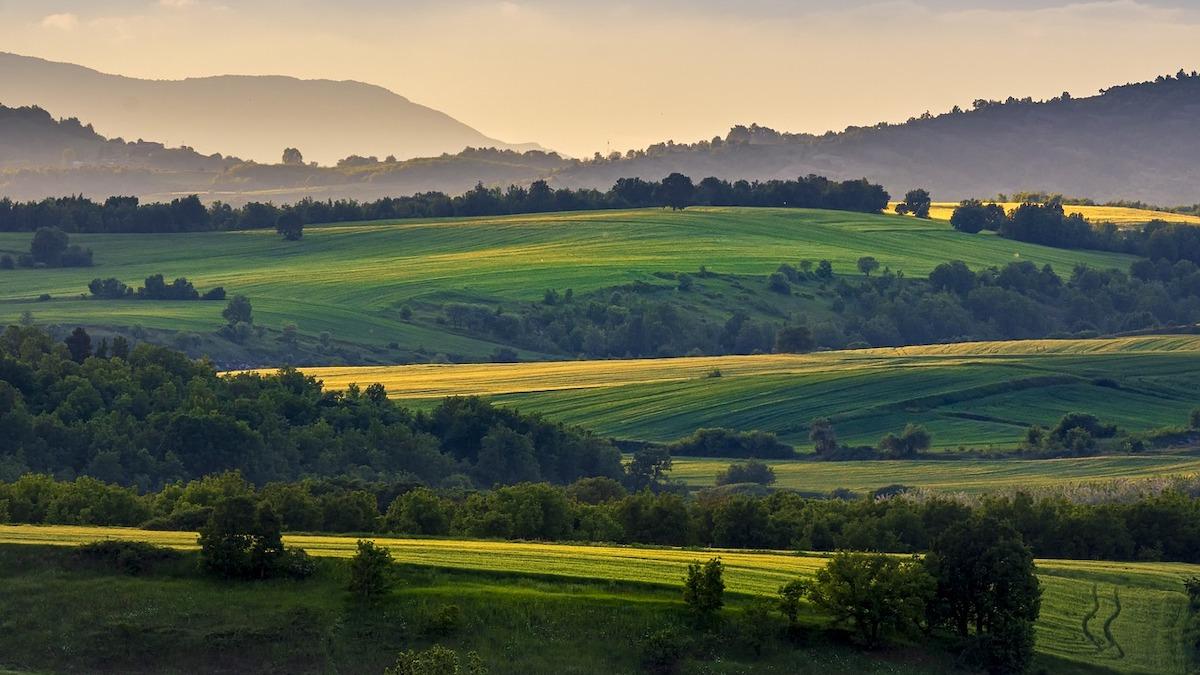 Al via il Censimento agricolo dell'Istat, dal 2021 digitale e permanente