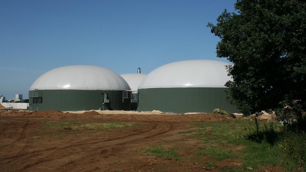 Dl Milleproroghe, proroga validità patentini e incentivi per il biogas
