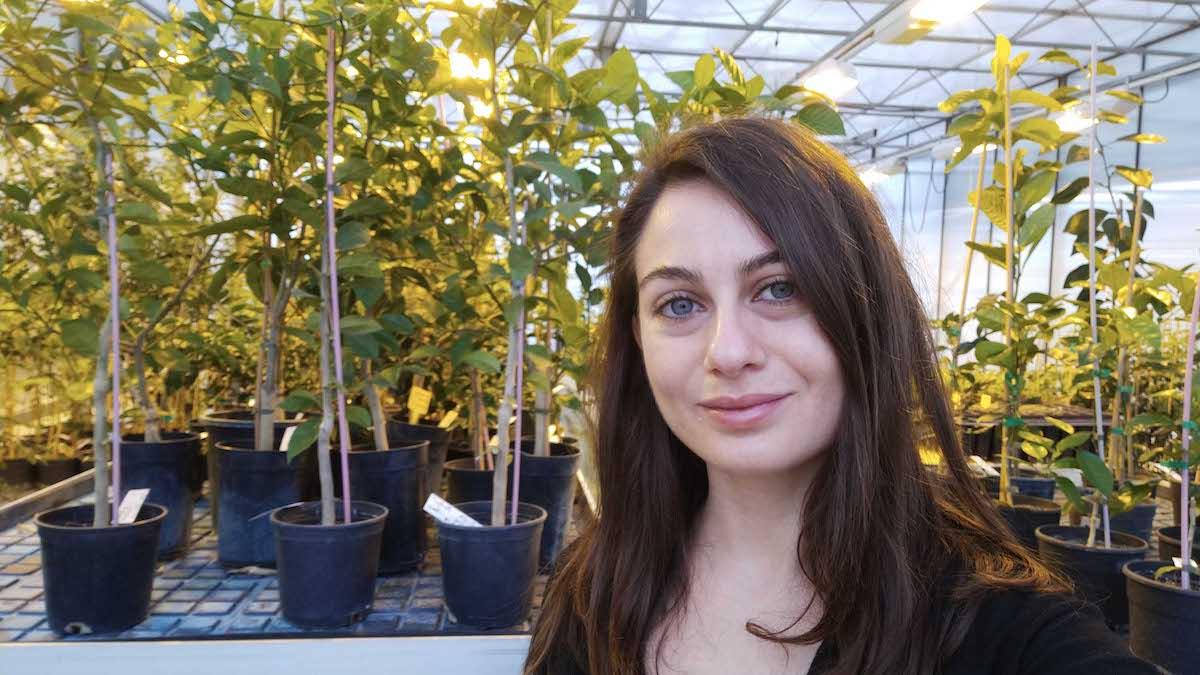 A una catanese il premio dell'Aissa intitolato al genetista Michele Stanca