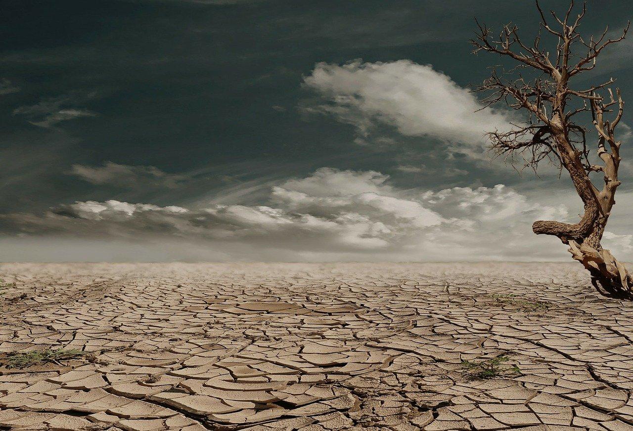 """Una scuola di agrometeorologia per un'agricoltura """"climate smart"""""""