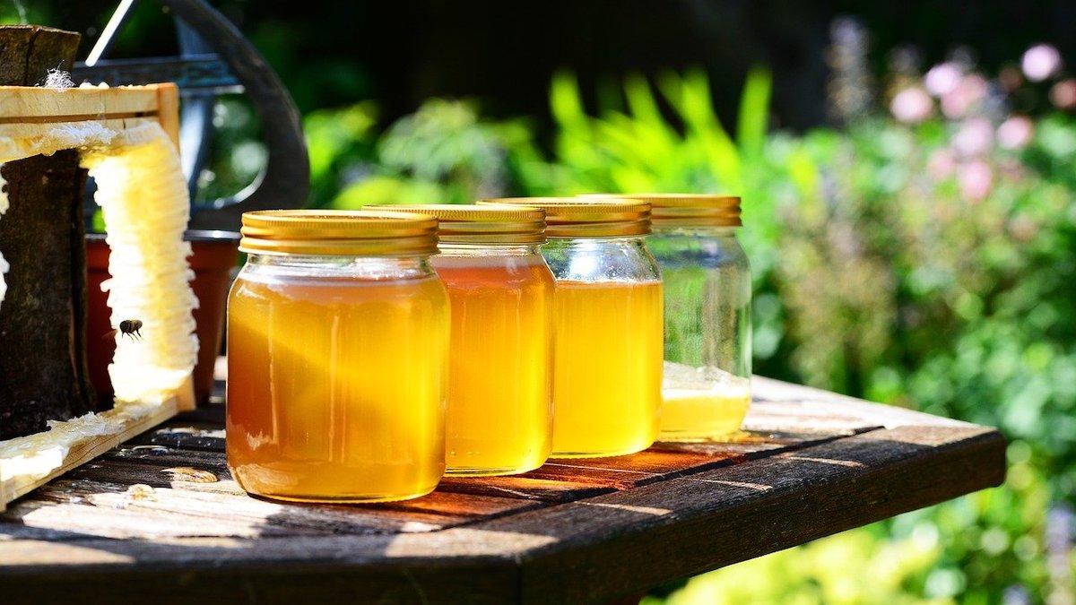 Progetti per l'apicoltura, il Mipaaf pubblica un bando da due milioni di euro