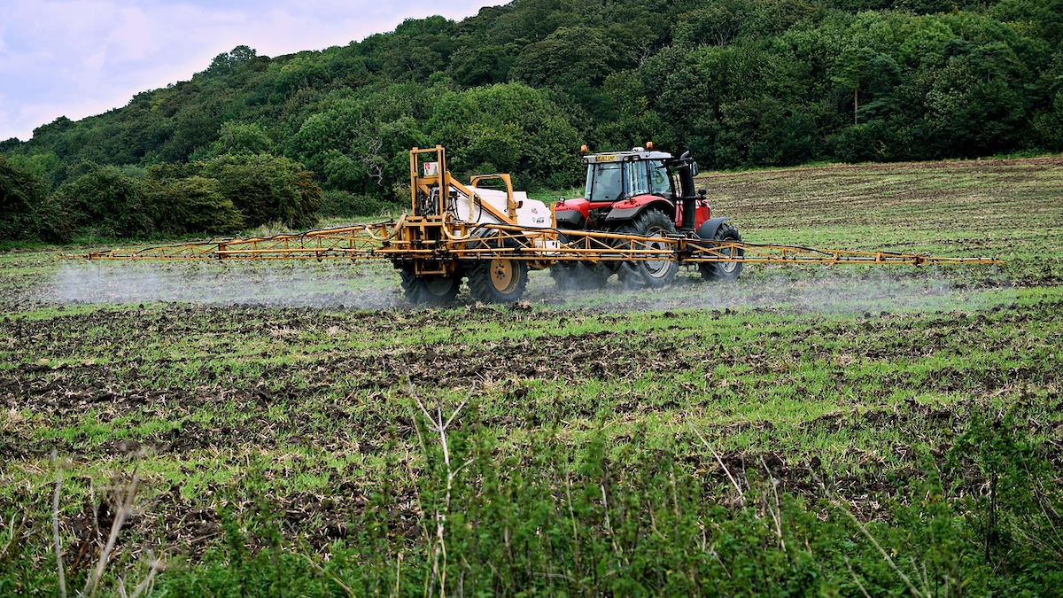 Pesticidi giù del 32% in dieci anni: agricoltura italiana più green d'Europa