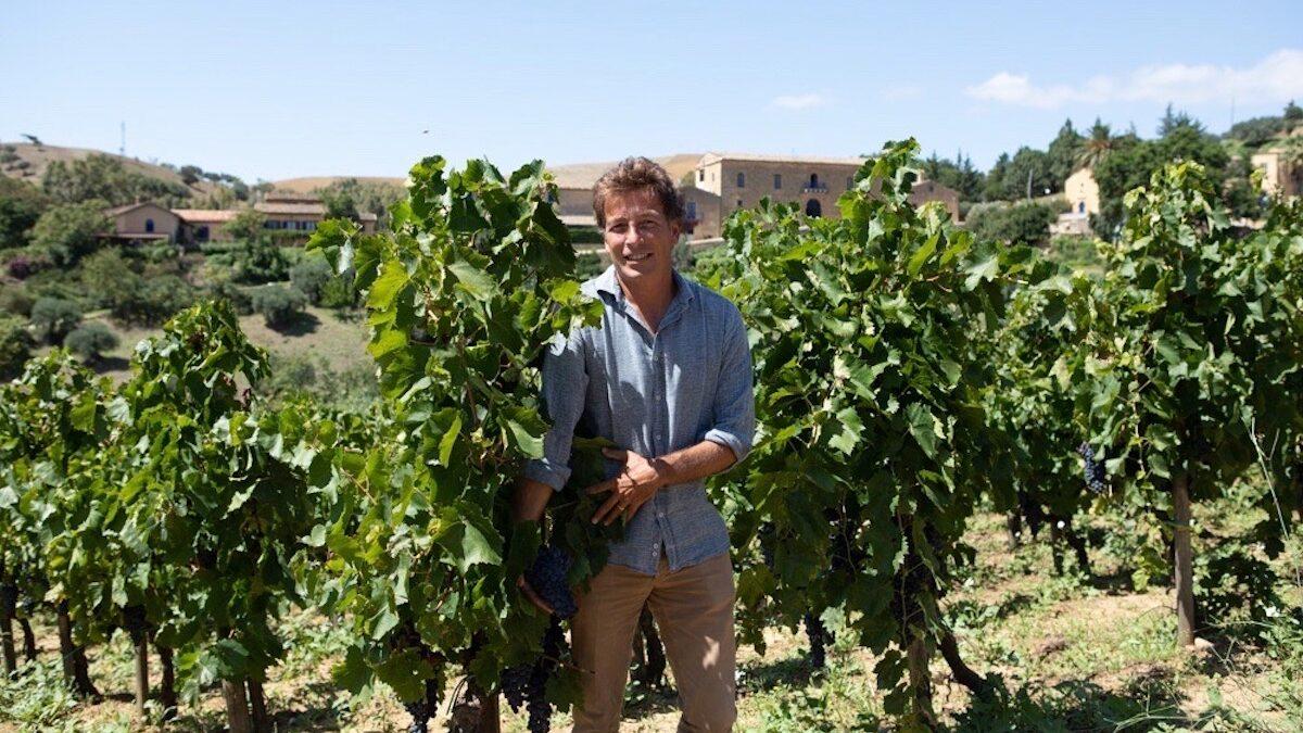 Sostenibilità della viticoltura siciliana, webinar della Fondazione SOStain