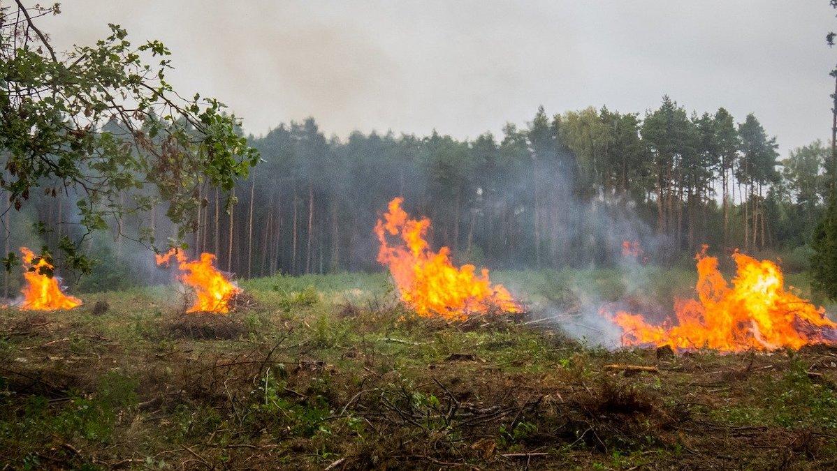 Campagna antincendio a rischio, mancano all'appello 77 milioni di euro