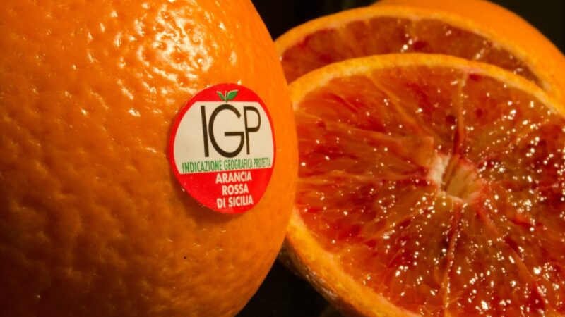 arancia rossa Igp