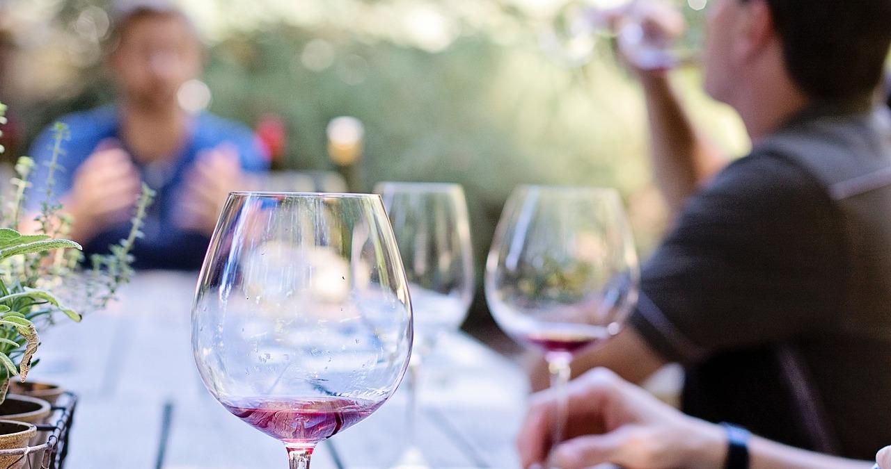 Vino e sostenibilità ambientale, nasce la Slow Wine Coalition